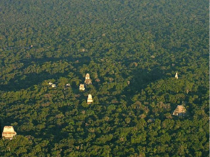 Tikal Birdview